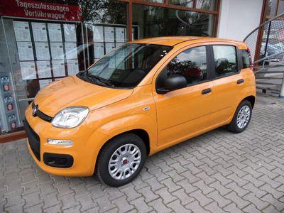 gebraucht Fiat Panda 1.2 Easy mit Klimaanlage, MP3/Radio, ZV mit Fernb.
