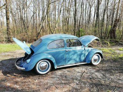 gebraucht VW Käfer /