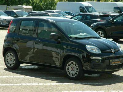 gebraucht Fiat Panda NewAutomatik erst 10.000 km gelaufen!