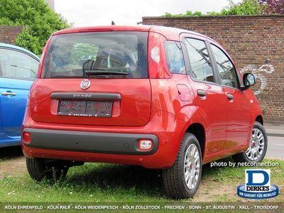 gebraucht Fiat Panda New1.2 Easy KLIMA