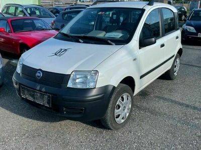 gebraucht Fiat Panda 4x4 1.2 8V Trekking