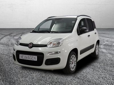 gebraucht Fiat Panda Young