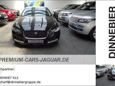 gebraucht Jaguar XF Pure Gebrauchtwagen, bei Autohaus Dinnebier GmbH