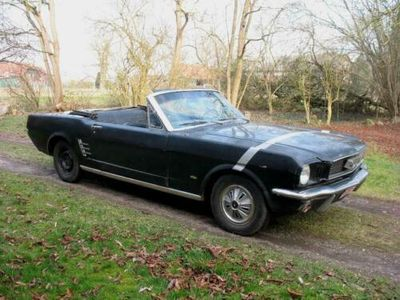 second-hand Ford Mustang Cabriolet V8 1966 Schaltgetriebe