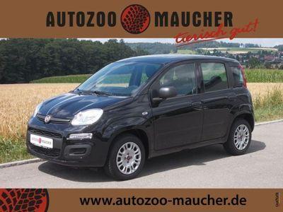 second-hand Fiat Panda 1.2 8V Easy / Klima