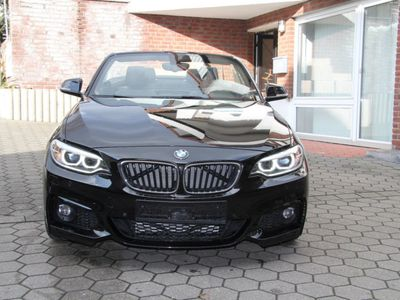 gebraucht BMW 220 d Cabrio M Sport Nav. Prov/Xenon/Leder/Keyles