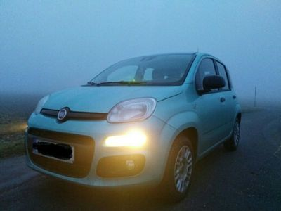 gebraucht Fiat Panda New