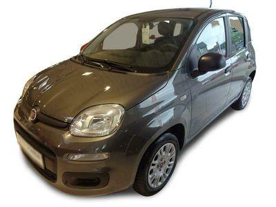 gebraucht Fiat Panda Easy 1.2 69PS E6D-TEMP