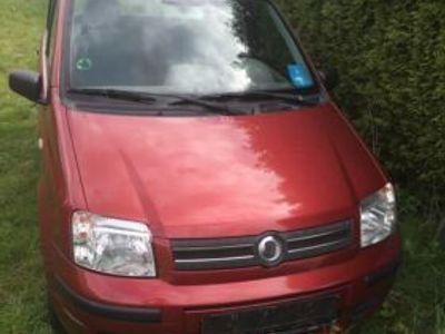 used Fiat Panda Dynamic Typ 169 mit Klima ‼️FEST PREIS ‼️