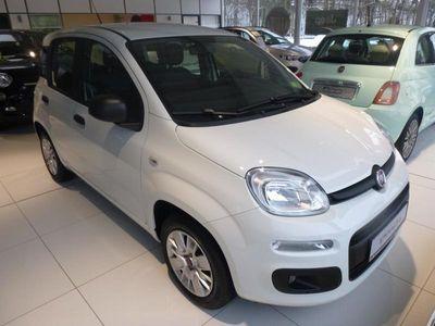 gebraucht Fiat Panda Easy 1.2 8V Klima Radio Allwetterreifen