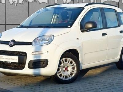 gebraucht Fiat Panda 1,2 KLIMA ZV eFH ESP