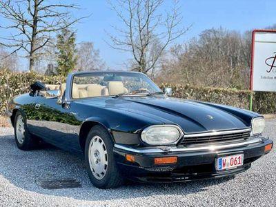 gebraucht Jaguar XJS 4.0L ,6Zylinder Celebration,Leder Sahara, 1 Hand