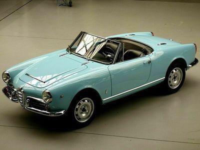 gebraucht Alfa Romeo Giulia 1600 Spider - der Beste!