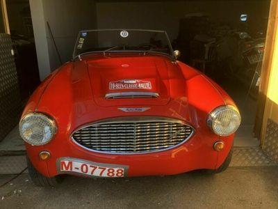 gebraucht Austin Healey 3000 MK I - BT7 - 1959