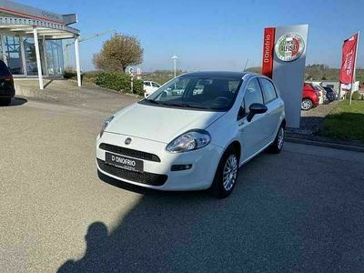 gebraucht Fiat Punto 1.2 8V Young II Neu
