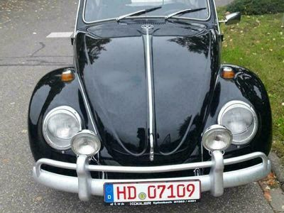 gebraucht VW Käfer Vw