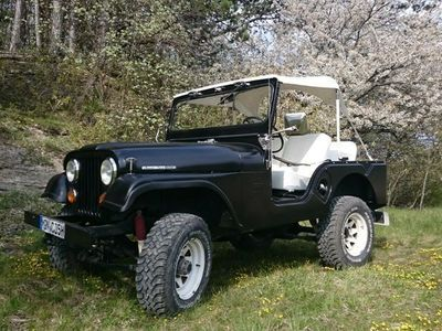 gebraucht Jeep Willys Tuxedo Park Mark IV