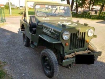 willys gebrauchte jeep willys kaufen 19 g nstige autos zum verkauf. Black Bedroom Furniture Sets. Home Design Ideas