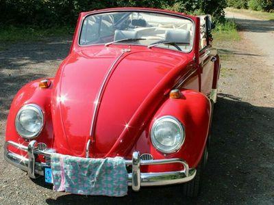 gebraucht VW Käfer VWCabrio 1500 BJ 1967,H-Zulassung,TÜV neu