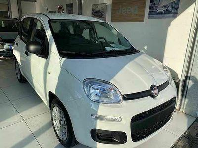 gebraucht Fiat Panda Neu 1.2 8V 69 PS / Klimaanlage / DAB / Parksensoren