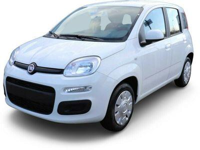 gebraucht Fiat Panda PandaEasy 1.2 69PS KLIMAANLAGE START&STOPP DAB+