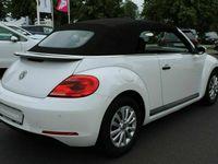 gebraucht VW Beetle Cabriolet 1.2 TSI BMT *PDC / Sitzheizung / MP3* Gebrauchtwagen