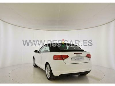 usado Audi A3 Cabriolet 1.6tdi Ambition 105 cv