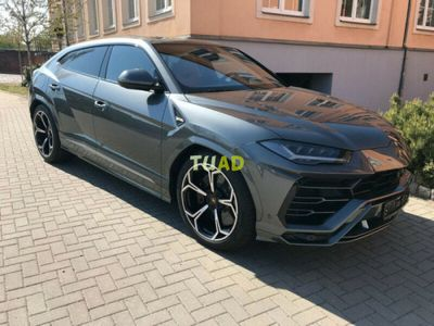 usado Lamborghini Urus
