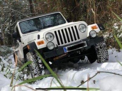 usado Jeep Wrangler 4.0 Rubicon TJ