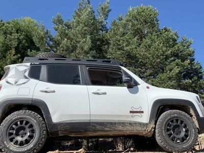 usado Jeep Renegade 2.0Mjt Trailhawk 4x4 ADLow Aut. 125kW