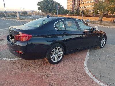 brugt BMW 520 Serie 5 F10 Diesel