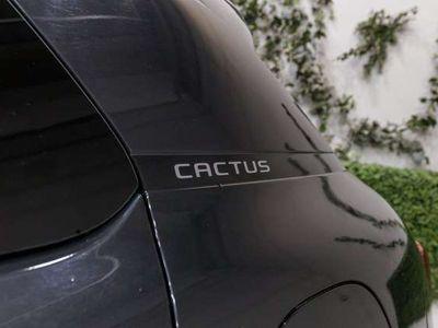usado Citroën C4 Cactus Berlina 110cv Manual de 5 Puertas