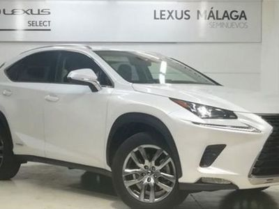 usado Lexus NX300h Executive Navigation 4WD