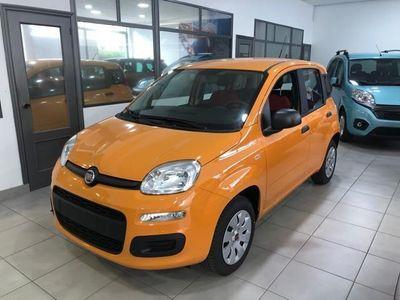 usado Fiat Panda 1.2 Pop
