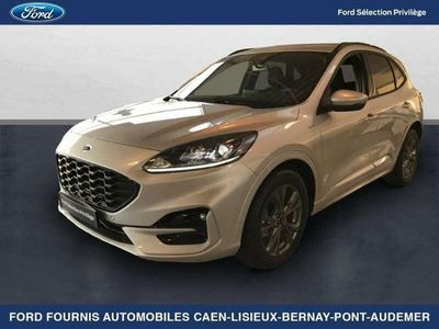 occasion Ford Kuga 2.0 EcoBlue 150ch mHEV ST-Line