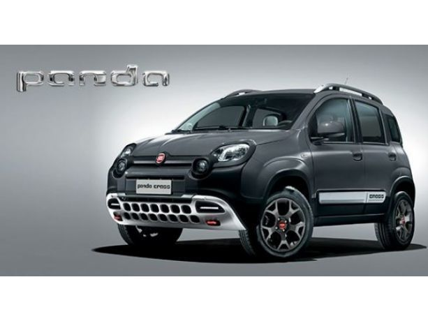 sold fiat panda cross 1 3 mjt 95 c used cars for sale autouncle. Black Bedroom Furniture Sets. Home Design Ideas