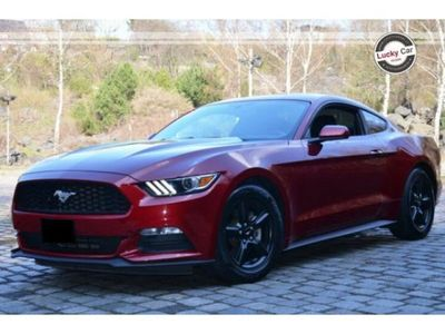 brugt Ford Mustang V6 3.7l Automatic *XENO*PELLE*CAM*