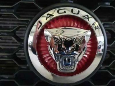 usata Jaguar XF 2.0 D 240 CV AWD aut. R-Sport