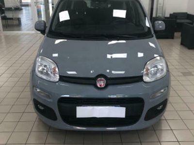 usado Fiat Panda 1.3 MJT 95 CV S