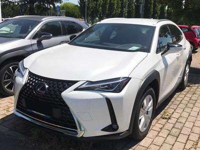 usata Lexus UX 250h 2.0 Hybrid Business CVT 2WD