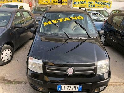 usata Fiat Panda Panda1.2 Dynamic Natural Power Mamy