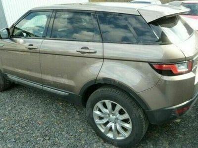 usata Land Rover Range Rover evoque 2.0 TD4 150 CV 5p. Business Edition Tetto