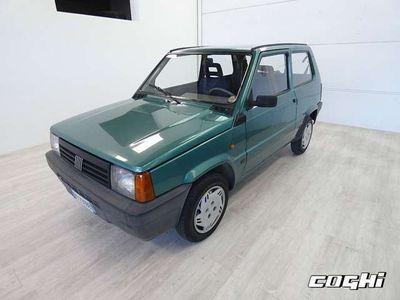 usata Fiat Panda Panda1100 i.e. cat College