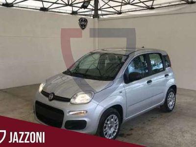 usata Fiat Panda 1.2 69 CV Easy - VARI COLORI