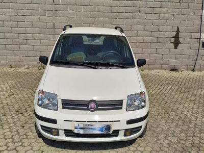 usata Fiat Panda 1.2 Dynamic Natural Power