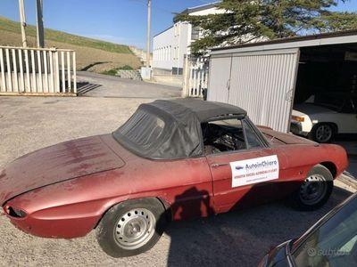 usata Alfa Romeo Giulia Spider 105.03 1600duetto osso
