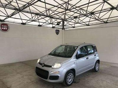 usata Fiat Panda 1.2 69 cv Easy - PAGHI NEL 2021!