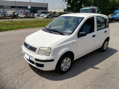 usata Fiat Panda 1.3 MJT 16V - OK NEOPATENTATI