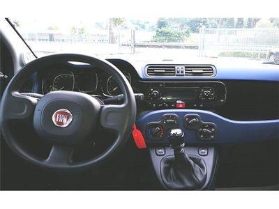usata Fiat Panda New1.2 Plus Evo 4X2