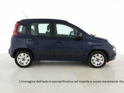 usata Fiat Panda Nuova 1.2 69cv s&s lounge euro 6d-temp